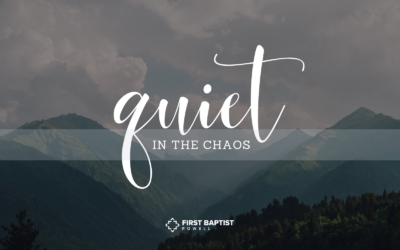 Quiet in the Chaos