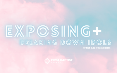 Exposing + Breaking Down Idols