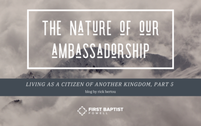 The Nature of our Ambassadorship