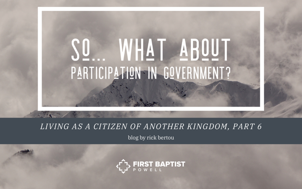 So… What About Participation in Government?